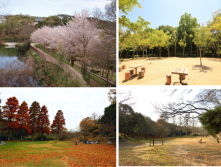 四季折々の一面を見せる『奥須磨公園』。